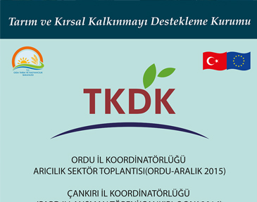 tkdk-organizasyonlari